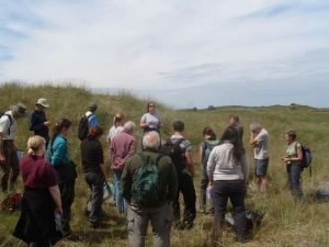 Ainsdale Long-term Monitoring (Ben Deed)